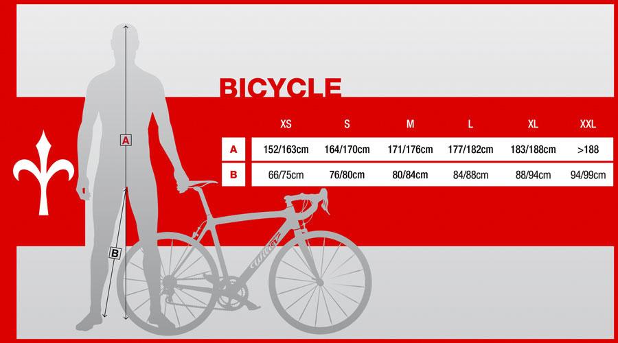 Road Bike Wilier Triestina Gtr Team Velobest